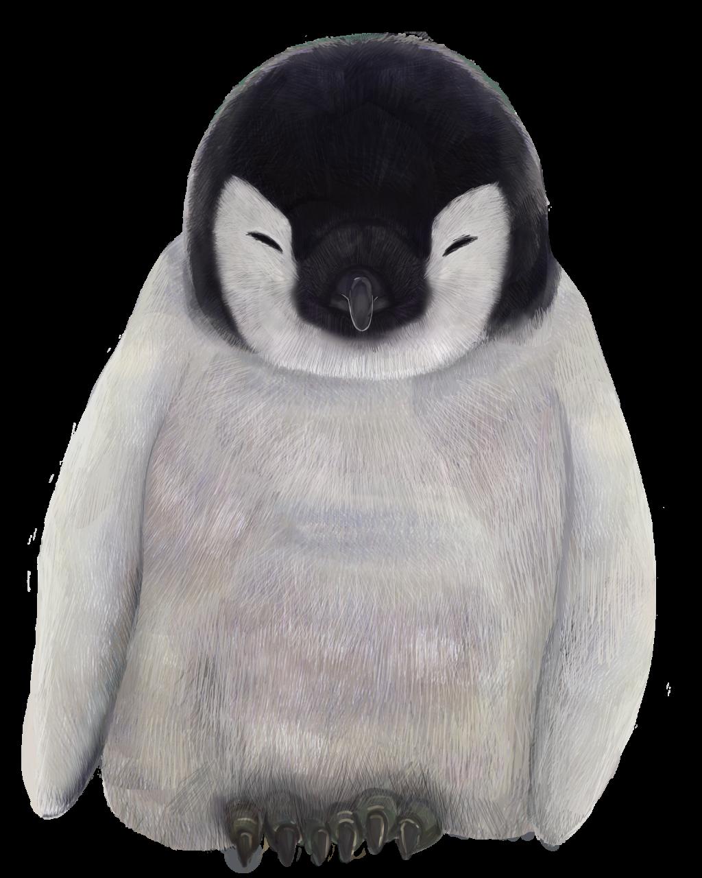 寝ているペンギンの赤ちゃんのイラスト