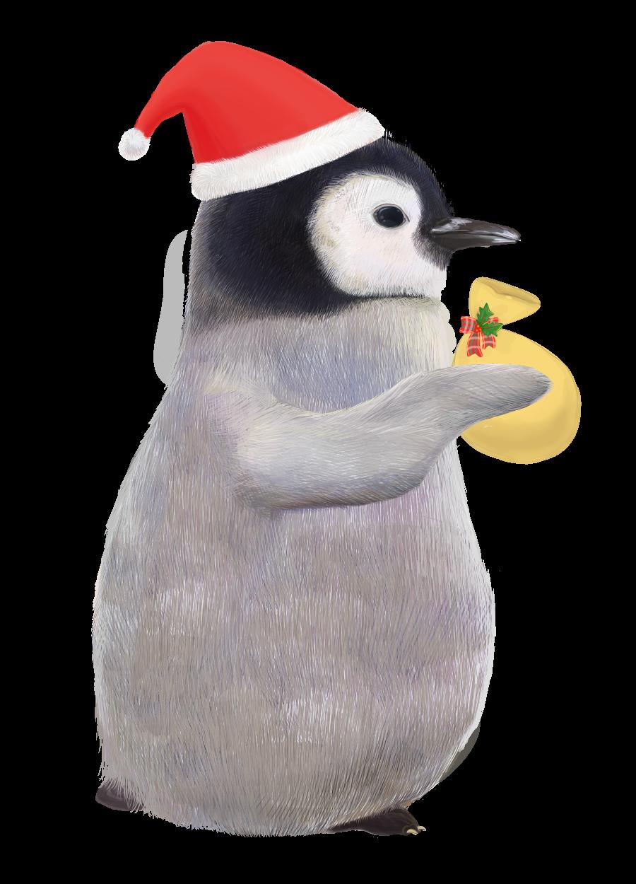 プレゼントをもつ赤ちゃんペンギンのサンタの無料イラスト