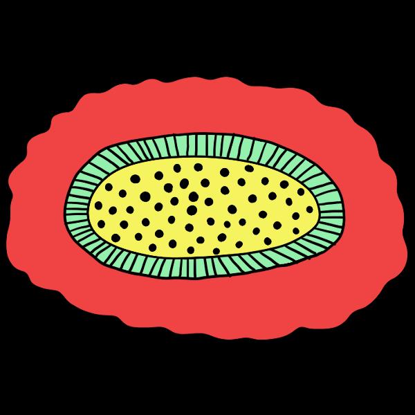 ポップな赤色の花の無料イラスト