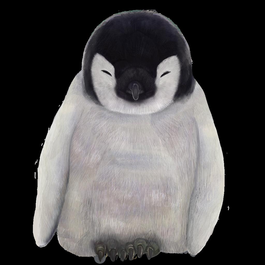 寝ている赤ちゃんペンギンの無料イラスト