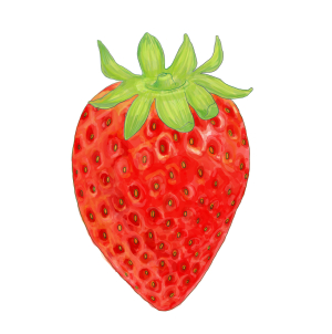 苺のフリーイラスト素材