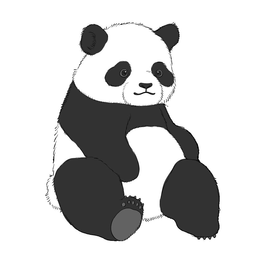 ジャイアントパンダのフリーイラスト